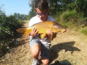 Common Carp — Leo Ouvrie