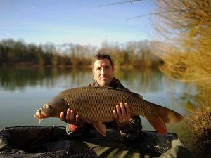 Common Carp — Jean-Sébastien  Picard