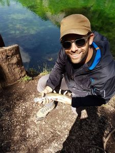 Brook Trout — Julien Porte