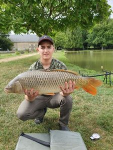 Common Carp — Rayanne LM