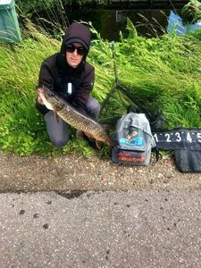 Northern Pike — Nicola Team Carna Street