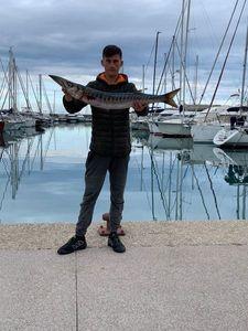 Great Barracuda — Arnaud Malizia