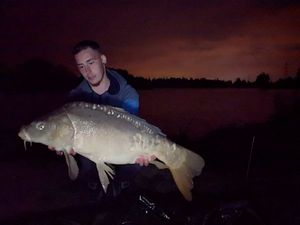 Mirror Carp — Joris Grand