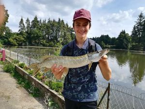 Northern Pike — Maël  Belin