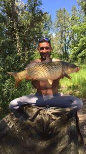 Common Carp — Najim Ben Mohamed