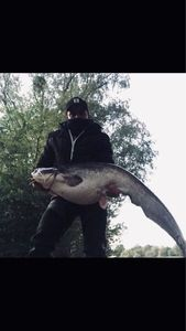 Wels — Adriano Crossbow fisherman