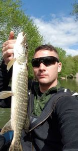 Northern Pike — Kevin le Gall