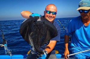 Common Stingray — Sebcricri Fishing