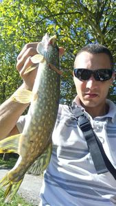 Northern Pike — Guitar D