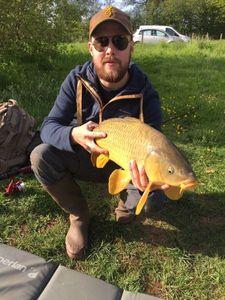 Common Carp — Florent Houel