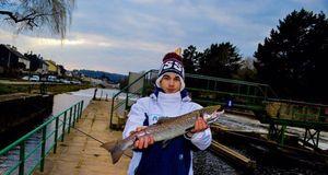 Atlantic Salmon (Landlocked) — Fanatick Fisher