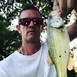 Largemouth Bass — Pat Sda