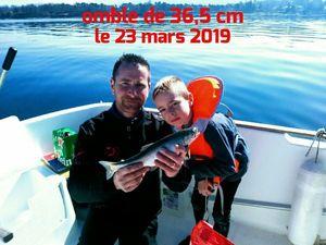 Arctic Char — Claude GALLAY