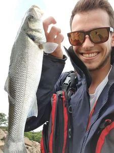 European Bass — Vincent Copaing