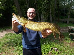 Northern Pike — Benjamin Cartiaux