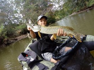 Northern Pike — Nathan Chanet