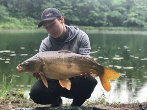 Mirror Carp — Mathis Cottonnet