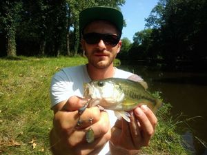 Smallmouth Bass — Florian Drnd