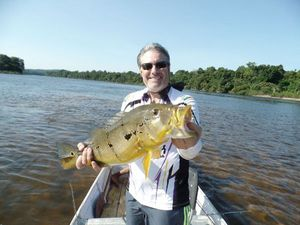 Peacock Bass (Tucunaré Intermedia) — Willy Lafon