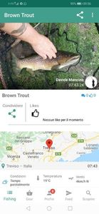 Brown Trout — Davide Mancino