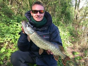 Northern Pike — Pascal Frappez