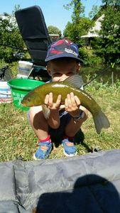 Tench — Scary Fishing