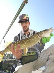 Northern Pike — Yaguel Lozinguez