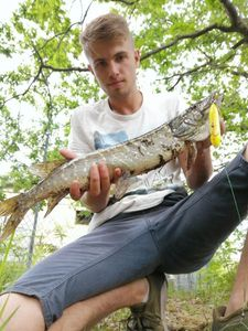 Northern Pike — Julien Marboutin