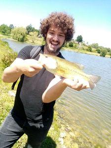 Largemouth Bass — Marius Gabard