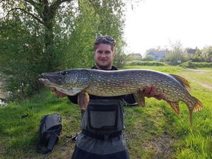 Northern Pike — Kévin Bonningre