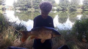 Common Carp — Lucas Aubry
