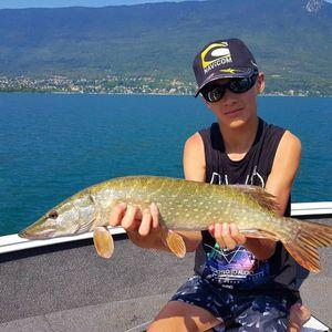 Northern Pike — jimmy maistrello guide de pêche