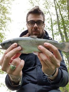 Rainbow Trout — Denis Brigat