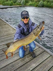 Northern Pike — Jimmy Tardieu