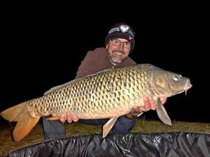 Common Carp — Jean-Frederic  COEN
