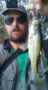 Smallmouth Bass — Cyrille Thuet