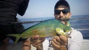 Dolphinfish — Jordan  Decomps