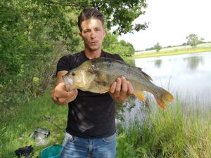 European Perch — Steeven Hurel