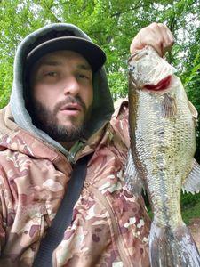 Largemouth Bass — Jonathan Mora