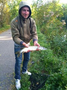 Northern Pike — Donat Rueff