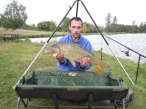 Common Carp — Sebastien Alix