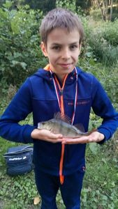 European Perch — Kéfran Soubi