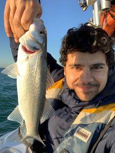 European Bass — Greg FishFriender