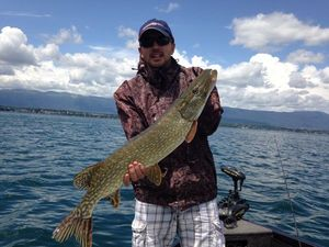 Northern Pike — Jr MARIE-HERNOT