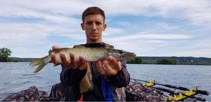Northern Pike — Alvinfishingbuffs