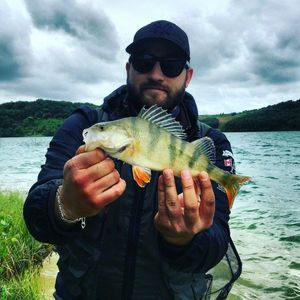 European Perch — Arnaud  Cambon