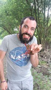 Spinycheek Crayfish — Emeric Heude