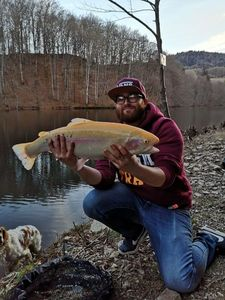 Golden Trout — Anthony  Lampre
