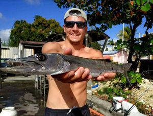 Great Barracuda — Billy Bass
