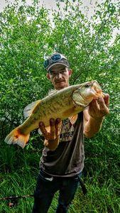Largemouth Bass — Chriscarnafishing Christian Marcadet